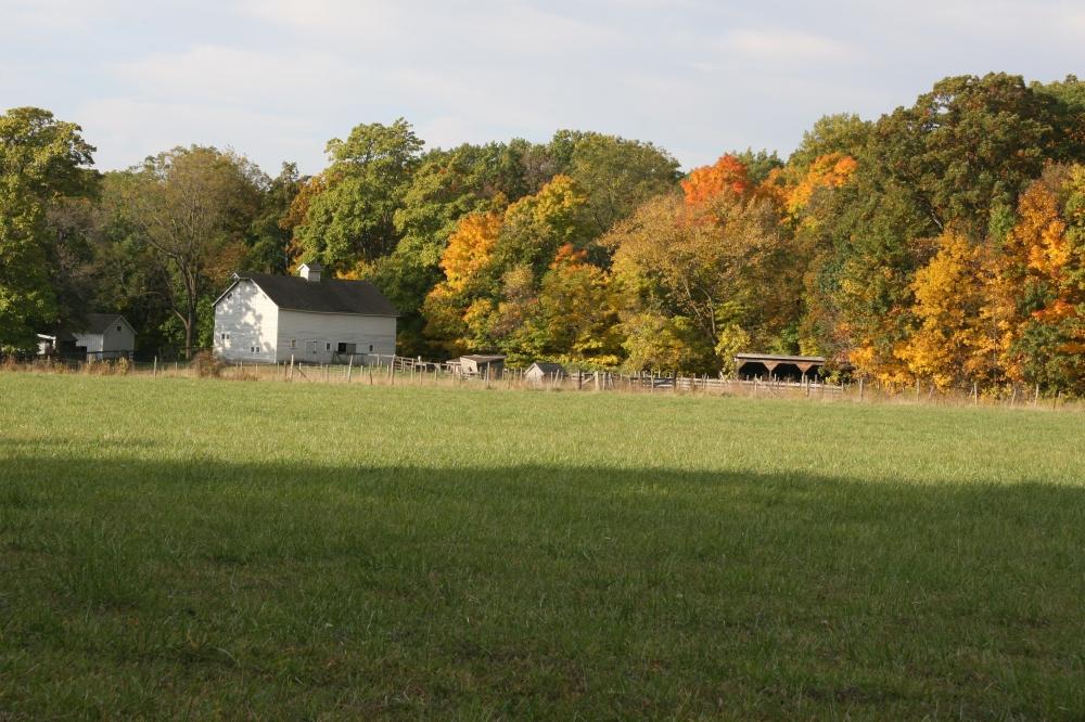 Chellberg Farm (1)